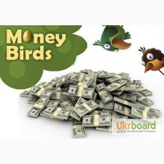 Заробіток в інвестиційній ігрі Money Birds